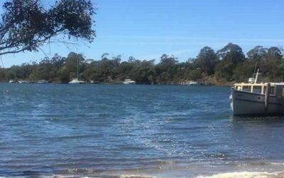 Medical Student Placement in East Gippsland