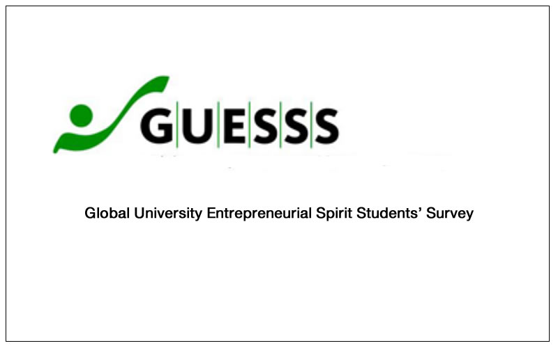 International entrepreneurship research project