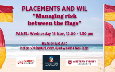 "Placements and WIL panel"" ""Managing risk between the flags"""