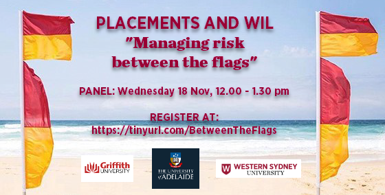 """Placements and WIL panel"""" """"Managing risk between the flags"""""""