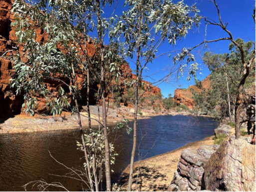 Psychology Placement in the Northern Territory